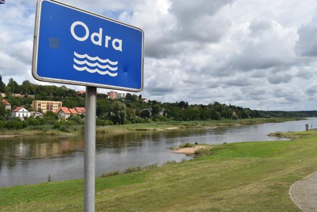 Poziom wody w Odrze w Krośnie Odrzańskim gwałtownie spadł w ostatnich tygodniach.