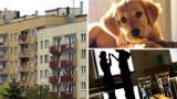 Czego NIE WOLNO robić w mieszkaniu w bloku? Sprawdź! Będziesz zaskoczony! Takie obowiązują zakazy