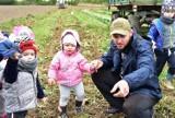 Dzień Ziemniaka w Sławoszynie: wykopki dla dzieci i dorosłych. Tu wiedzą jak połączyć przyjemne z pożytecznym! | ZDJĘCIA