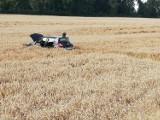 Gm. Miłoradz. Na drodze krajowej nr 22 w Gnojewie zderzyły się dwa samochody