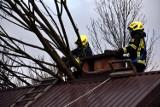 Za nami wietrzna noc. Strażacy usuwają powalone drzewa, pomagają przy uszkodzonych dachach
