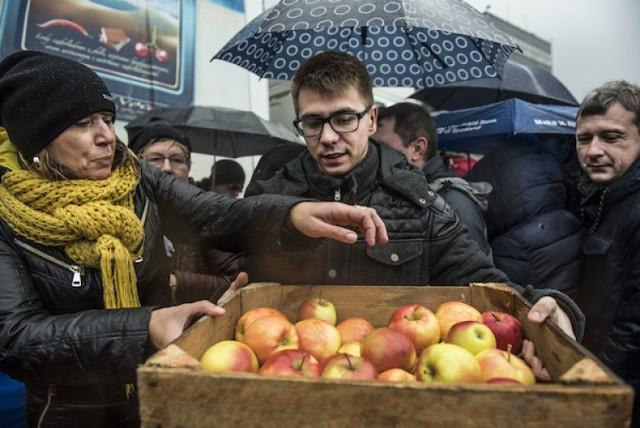 Toruń: Tłumy chętnych ustawiły się po skrzynki z jabłkami [ZDJĘCIA]