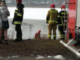 Strażacy poszukiwali psa pod wodą jeziora Jelonek [FOTO, FILM]