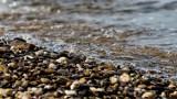 Finał operacji czysta rzeka. Co udało się zrobić dla środowiska w Lubelskiem? Sprawdź