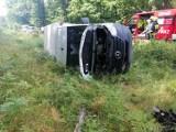 Wypadek w Szczedrzyku pod Opolem. Zwierzę wybiegło na drogę, bus wpadł do rowu i przewrócił się na bok