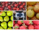 Przepisy na potrawy z owocami sezonowymi. Sprawdź, co zjeść