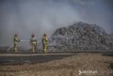 5 zastępów straży pożarnej walczyło z pożarem słomy i ścierniska [ZDJĘCIA]