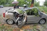 Wypadek w Tarnowie. Konar drzewa zmiażdżył trzy auta [ZDJĘCIA, WIDEO]