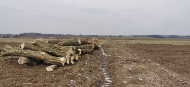 Po zakończeniu okresu zimowego, w ciągu którego możliwe było przygotowywanie się do rozpoczęcia prac, wykonawca nie poczynił żadnych postępów.