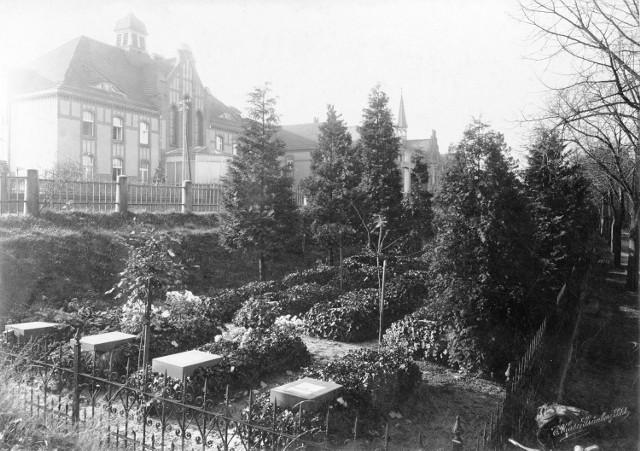 Park Tysiąclecia w Zielonej Górze powstał na terenie dawnego cmentarza. W tle widać zabudowę dzisiejszego Szpitala Uniwersyteckiego.