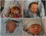 Ksawery, Amadeusz, Kuba i Maja urodzili się w szpitalu w Świebodzinie. Witamy na świecie Naszych Milusińskich!