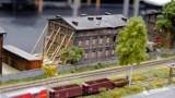 Miniaturowe cuda w Arenie Gliwice! Zobacz makiety kolejowe wykonane przez pasjonatów [ZDJĘCIA]