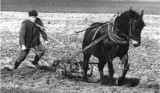 Tak wyglądała opolska wieś 40, 50 i 60 lat temu. Praca na roli, maszyny, gospodarstwa rolne, obejścia