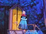 Disney On Ice: 25 lat fantazji na lodzie w Kraków Arenie [ZDJĘCIA]