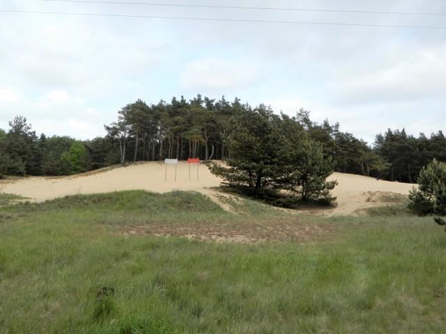 Biała Góra (użytek ekologiczny) na wschodnim skraju Otorowa, oddzielona od wsi Strugą Otorowską, to świadectwo niezwykłej przeszłości Puszczy Bydgoskiej, gdy ukształtowały się śródlądowe wydmy