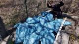 Akcja Olejki za papierki. Sprzątali okoliczne lasy i otrzymali olejki z konopi