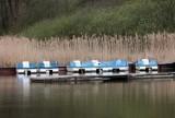 Masz dość siedzenia w domu? Rowery wodne, kajaki, łódki czekają w wypożyczalni na plaży miejskiej w Grudziądzu [godziny otwarcia, cennik]