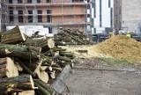 Drzewa w podwórzu ul. Krakowskiej w Opolu wycięte. Trwa rewitalizacja [ZDJĘCIA]