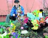 Zwierzyniec z pluszowych zabawek powstał przy bloku na Czechowie