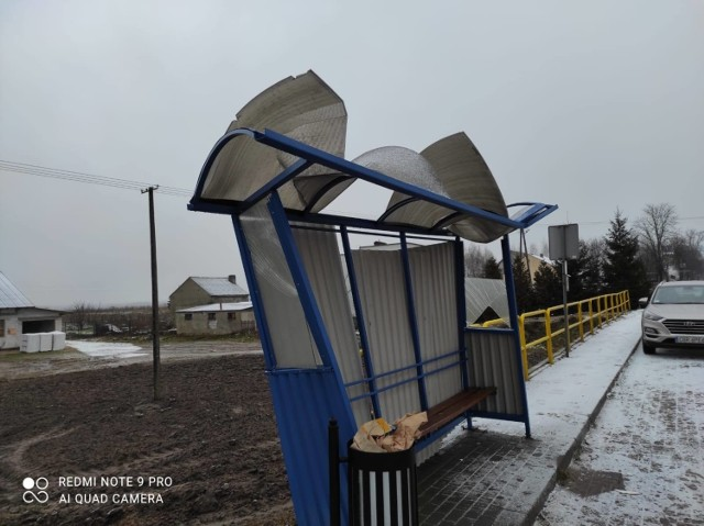 Na terenie powiatu brodnickiego doszło w ostatnim czasie do podpalenia pomnika przyrody oraz dewastacji przystanków