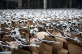 Veturilo szykuje się do nowego sezonu. Tysiące rowerów już czekają na warszawiaków! [ZDJĘCIA]