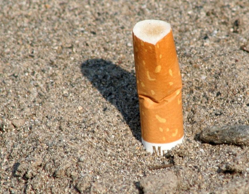 Oczysc Organizm I Rzuc Palenie Bez Wyrzeczen Naszemiasto Pl