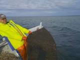Dziwny śluz na sieciach wyciąganych z Zatoki Puckiej. Zamiast ryb ohyda, komentują rybacy i dziwią się zjawisku. Zobacz te szokujące ZDJĘCIA
