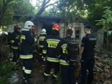 Dramatyczny pożar w Ostrowcu. Zginął człowiek. Policjanci badają sprawę
