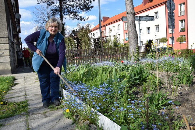 Danuta Wcześniak z niczego zrobiła przyblokowy ogródek pełen kwiatów i krzewów. Teraz musi go zlikwidować.