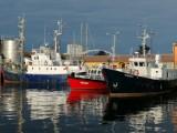 Port rybacki w Kołobrzegu tuż przed zachodem słońca. Jedna z wizytówek miasta