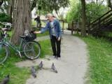 Panu Antoniemu międzyrzeckie gołębie jedzą nad Obrą prosto z ręki. Niestety, są i tacy, którzy te ptaki krzywdzą