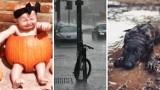 Jesień - najlepsza pora roku? Oczekiwania vs rzeczywistość