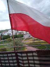 Dzień Flagi Rzeczypospolitej Polskiej w Kraśniku. Zobacz zdjęcia miasta