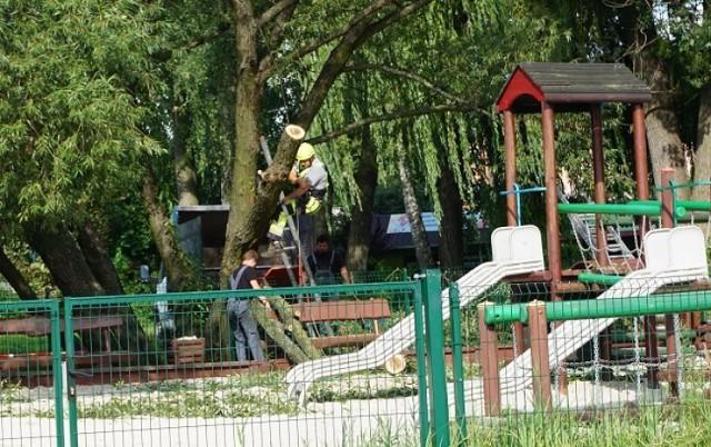 Służby miejskie usunęły złamaną wierzbę z placu zabaw