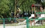 Miasto usunęło złamaną wierzbę z placu zabaw
