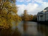 Przyroda budzi się do życia na wiosnę w Parku Miejskim w Kaliszu ZDJĘCIA
