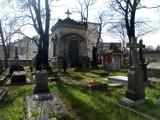 Cmentarz grecko-prawosławny w Kaliszu. Rocznica wpisania nekropoli w poczet zabytków ZDJĘCIA