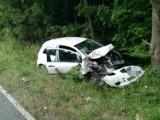 Pątnowo. Groźne zderzenie dwóch aut. Jedno uderzyło w drzewo ZDJĘCIA