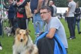 Cudowne psy w Rybniku. Było 200 ras i 2000 czworonogów na II Międzynarodowej Wystawie Psów Rasowych w Kamieniu. ZDJĘCIA z niedzieli