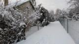 Zima w myszkowskich ogródkach działkowych ZDJĘCIA