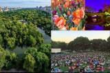 Kraków. Taki Central Park mieszkańcy chcą w Czyżynach. Zobacz, jak wygląda wzorzec z Manhattanu [ZDJĘCIA]