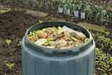 Jak oszczędzać pieniądze dzięki kompostowaniu? Porady