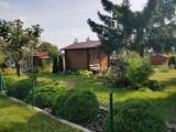 Boom na działki ogrodnicze w Pruszczu. Ceny kilkukrotnie wyższe niż przed pandemią