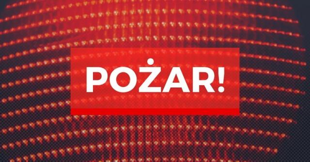 Pożar w piwnicy szpitala w Gdyni we wtorek, 2.02.2021 r. Ewakuowano 29 osób