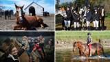 TOP 32 stajnie i stadniny koni w Kujawsko-Pomorskiem. Zobacz ranking szkół nauki jazdy konnej