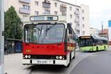 Nie ma drugiej takiej linii autobusowej na świecie! Gorzów uruchomi specjalny kurs 764. Będzie jazda!