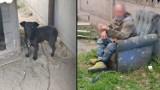 """Dobrzyca. Gwałcił i maltretował psy? Przerażające! """"Wszyscy wiedzieli"""". Sprawę 42-latka z Sośnicy bada pleszewska policja"""