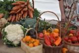 Zapraszamy na Targollę - targ zdrowej żywności  i  święto lokalnych producentów!