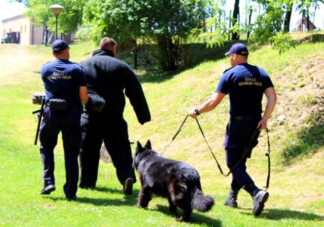"""Gminne ćwiczenia obronne """"ŻURAW 21"""" w Żurawicy koło Przemyśla, połączone z pokazem tresury i wyszkolenia psów służbowych Straży Ochrony Kolei."""