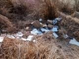 Jareniówka. Wyrzucili śmieci nad rzeką, zostawiając też… nazwisko i adres